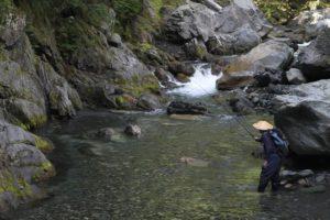 Découvrez la technique du Tenkara. Pêcheur à la mouche japonais en action