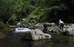 Pêcheur au Tenkara en position classique